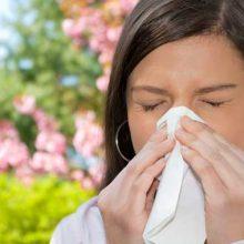 Butterbur: An Ancient Treatment for Modern Allergies