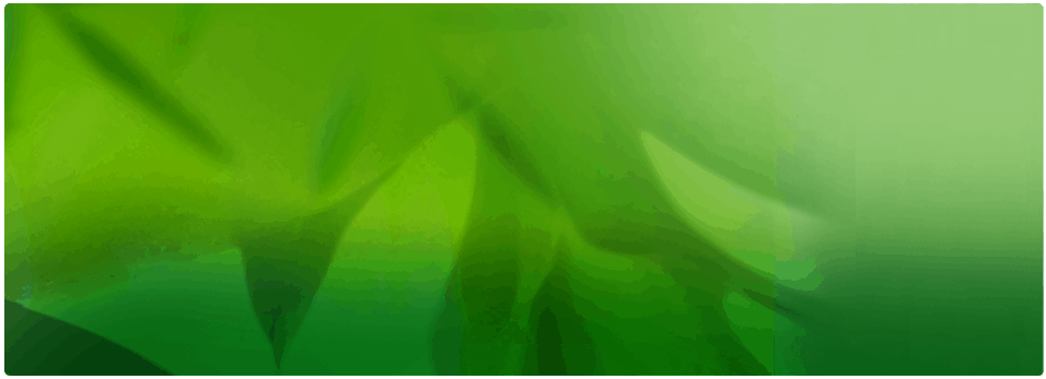 slide1-blank